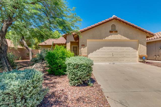 17710 N Austin Avenue, Surprise, AZ 85374 (#6098656) :: The Josh Berkley Team