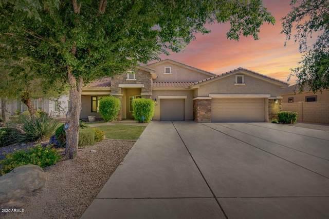 11451 E Stanton Circle, Mesa, AZ 85212 (MLS #6098686) :: Yost Realty Group at RE/MAX Casa Grande