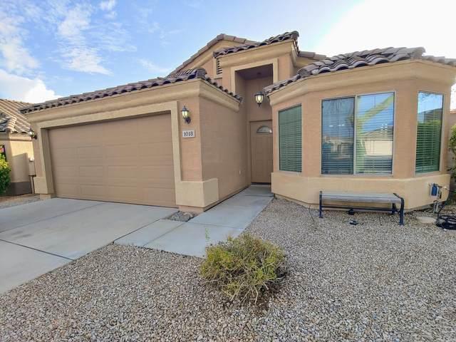 1018 N 90TH Circle, Mesa, AZ 85207 (MLS #6098706) :: Yost Realty Group at RE/MAX Casa Grande