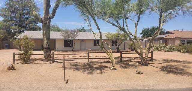 1228 N 67TH Street, Mesa, AZ 85205 (MLS #6098707) :: Yost Realty Group at RE/MAX Casa Grande