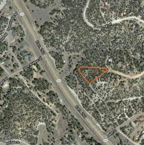 3632 Bobcat Trail, Overgaard, AZ 85933 (MLS #6098721) :: Devor Real Estate Associates