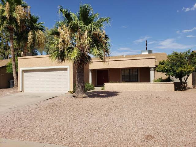 7333 S Palm Drive, Tempe, AZ 85283 (MLS #6098733) :: BIG Helper Realty Group at EXP Realty