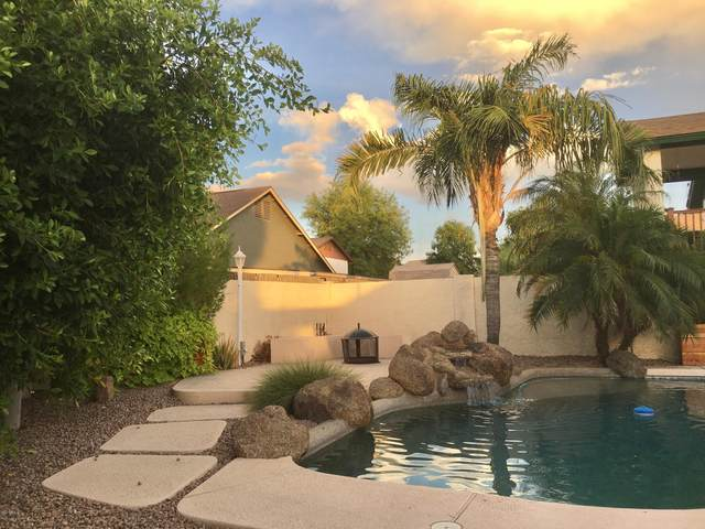 1125 N Gibson Street, Gilbert, AZ 85234 (#6098740) :: Luxury Group - Realty Executives Arizona Properties