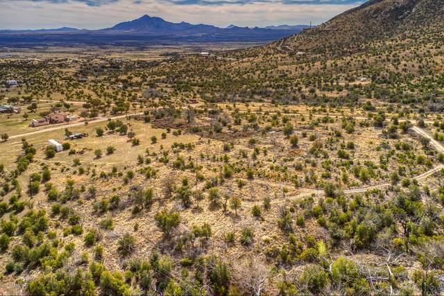 9987 S Ash Lane, Hereford, AZ 85615 (MLS #6098747) :: Keller Williams Realty Phoenix