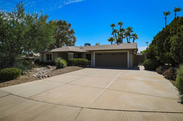 14026 N 44TH Place, Phoenix, AZ 85032 (MLS #6098750) :: The Laughton Team