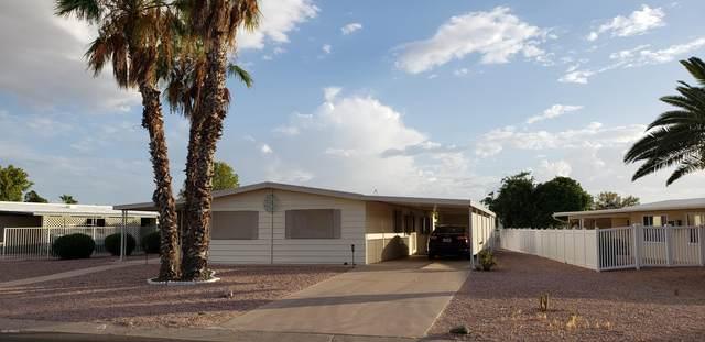 26224 S Lakeview Drive, Sun Lakes, AZ 85248 (MLS #6098779) :: Yost Realty Group at RE/MAX Casa Grande