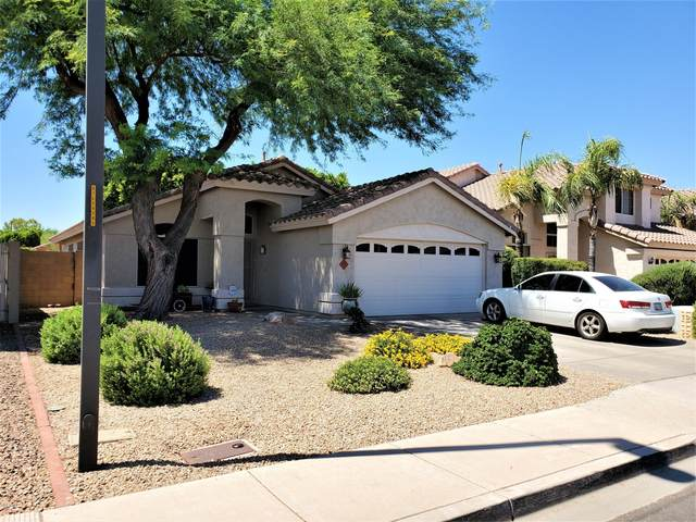 475 W San Angelo Street, Gilbert, AZ 85233 (MLS #6098793) :: The Everest Team at eXp Realty