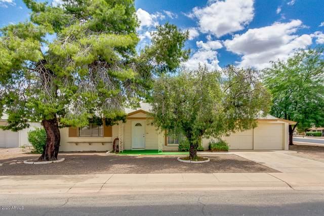 11221 N 111TH Avenue, Sun City, AZ 85351 (MLS #6098794) :: Yost Realty Group at RE/MAX Casa Grande