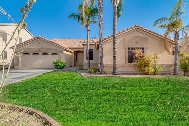 2851 E Santa Rosa Drive, Gilbert, AZ 85234 (MLS #6098820) :: Yost Realty Group at RE/MAX Casa Grande