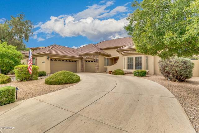 18447 E Oak Hill Lane, Queen Creek, AZ 85142 (MLS #6098832) :: Long Realty West Valley