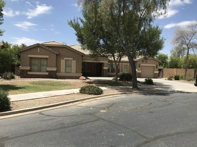 19833 E Raven Drive, Queen Creek, AZ 85142 (MLS #6098838) :: The Everest Team at eXp Realty