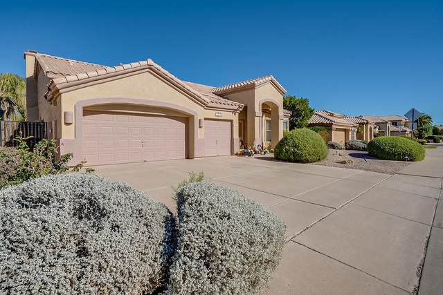 1274 W Windhaven Avenue, Gilbert, AZ 85233 (MLS #6098869) :: The Carin Nguyen Team
