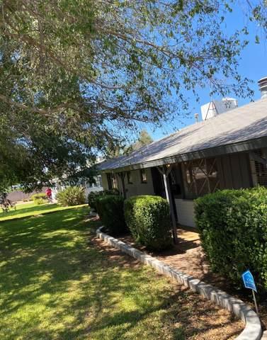 3128 N 41ST Place, Phoenix, AZ 85018 (MLS #6098875) :: Brett Tanner Home Selling Team