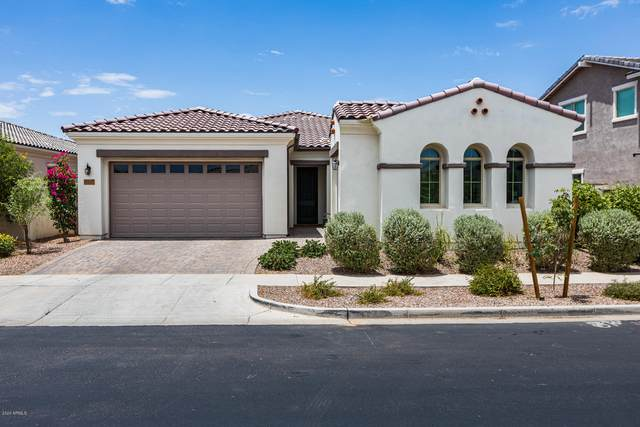 4862 S Curie Way, Mesa, AZ 85212 (MLS #6098938) :: Yost Realty Group at RE/MAX Casa Grande