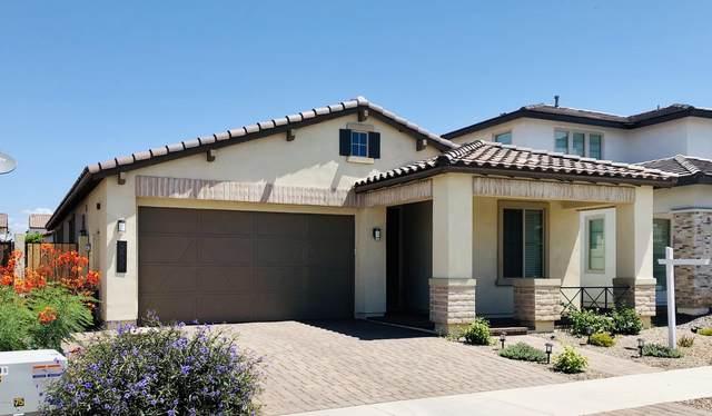 3858 E Harrison Street, Gilbert, AZ 85295 (MLS #6098944) :: Brett Tanner Home Selling Team