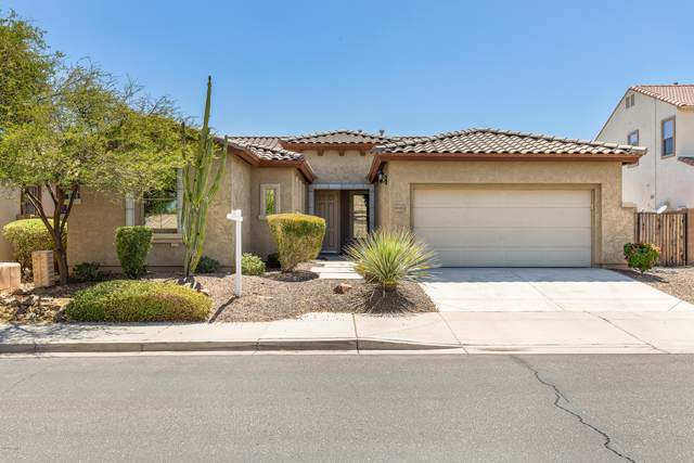29382 N 126TH Lane, Peoria, AZ 85383 (MLS #6098948) :: Klaus Team Real Estate Solutions