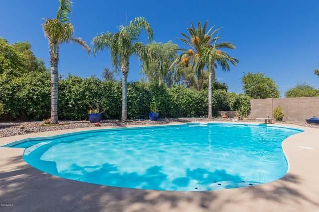 1930 W Kristal Way, Phoenix, AZ 85027 (MLS #6098949) :: Conway Real Estate