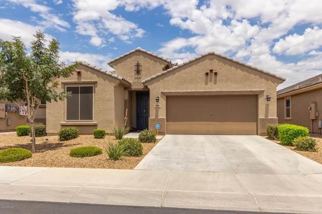 10262 W Golden Lane, Peoria, AZ 85345 (#6098977) :: AZ Power Team | RE/MAX Results