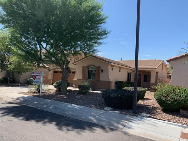 2727 E Lodgepole Drive, Gilbert, AZ 85298 (MLS #6098979) :: The W Group