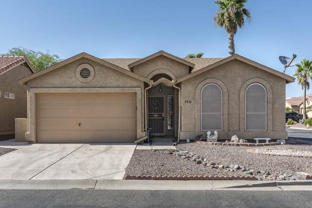 1936 E Lindrick Drive, Chandler, AZ 85249 (MLS #6098992) :: My Home Group