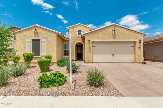 3060 E Indigo Court, Chandler, AZ 85286 (MLS #6098997) :: Scott Gaertner Group