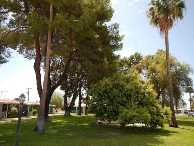 10432 W Oakmont Drive, Sun City, AZ 85351 (MLS #6099017) :: My Home Group
