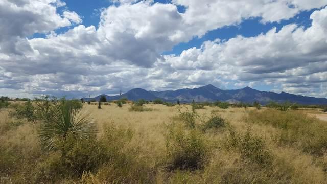 Tbd E Jicarilla Avenue, Hereford, AZ 85615 (MLS #6099069) :: Keller Williams Realty Phoenix
