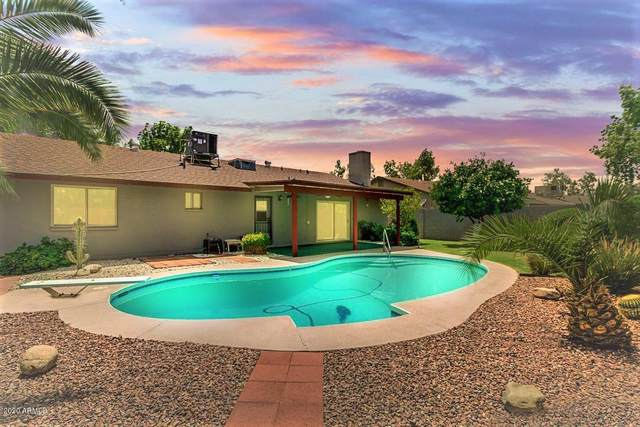 10811 N 46TH Avenue, Glendale, AZ 85304 (MLS #6099074) :: The Garcia Group