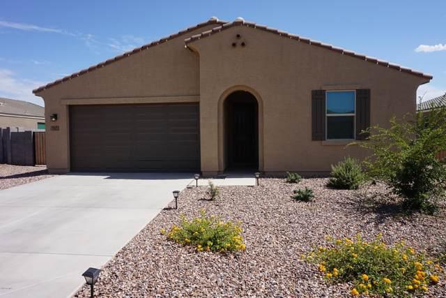 7163 E Mallard Court, San Tan Valley, AZ 85143 (MLS #6099098) :: The Laughton Team