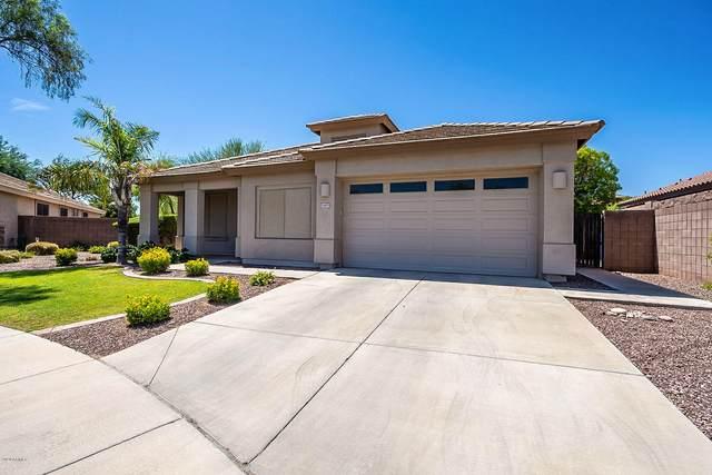 1469 E Iris Drive, Chandler, AZ 85286 (MLS #6099108) :: Midland Real Estate Alliance