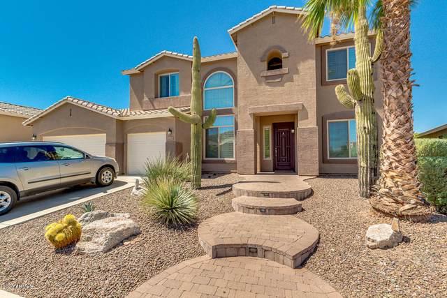 6618 W Red Fox Road, Phoenix, AZ 85083 (MLS #6099133) :: Arizona Home Group