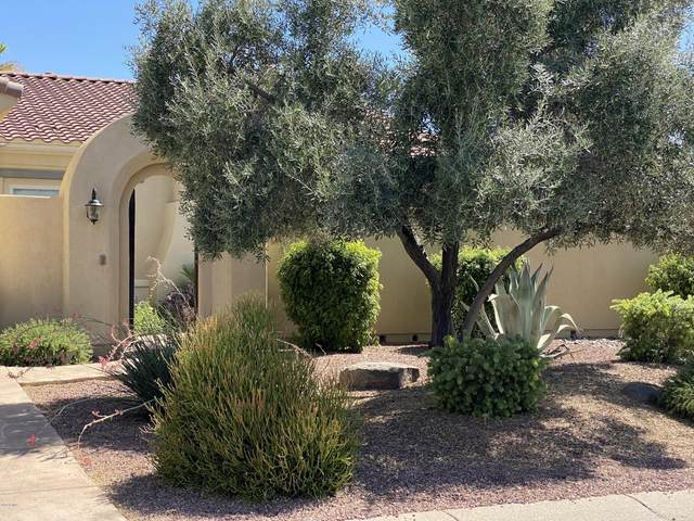 13231 W Cabrillo Drive, Sun City West, AZ 85375 (MLS #6099147) :: Lux Home Group at  Keller Williams Realty Phoenix