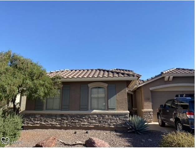 2447 W Shackleton Drive, Phoenix, AZ 85086 (MLS #6099150) :: Nate Martinez Team
