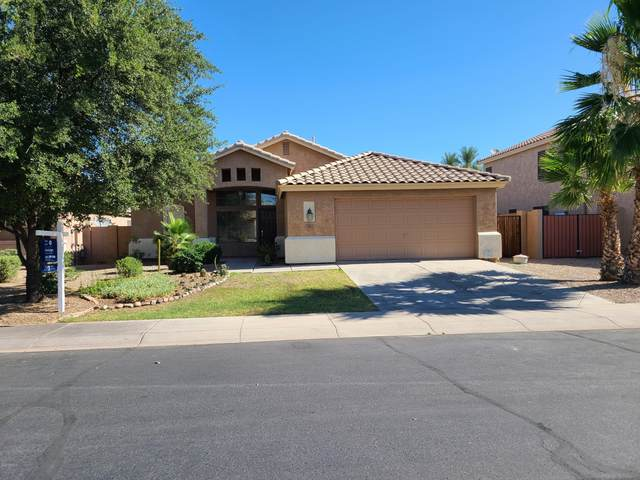 284 W Oriole Way, Chandler, AZ 85286 (MLS #6099172) :: Lucido Agency