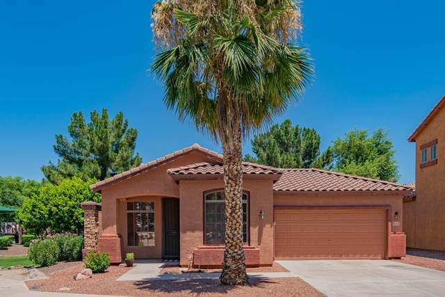 2630 E Wildhorse Place, Chandler, AZ 85286 (MLS #6099179) :: Openshaw Real Estate Group in partnership with The Jesse Herfel Real Estate Group