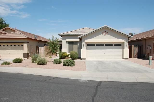 4229 N 125TH Avenue, Litchfield Park, AZ 85340 (MLS #6099187) :: The Laughton Team