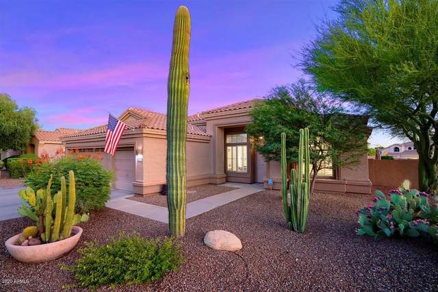 4629 E Williams Drive, Phoenix, AZ 85050 (MLS #6099189) :: The Property Partners at eXp Realty