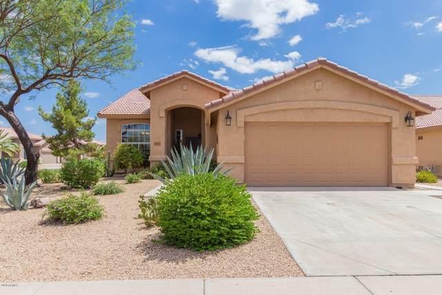 11651 W Flycatcher Court, Surprise, AZ 85378 (MLS #6099196) :: Brett Tanner Home Selling Team