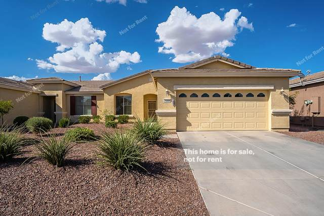 20369 N Lemon Drop Drive, Maricopa, AZ 85138 (MLS #6099207) :: neXGen Real Estate