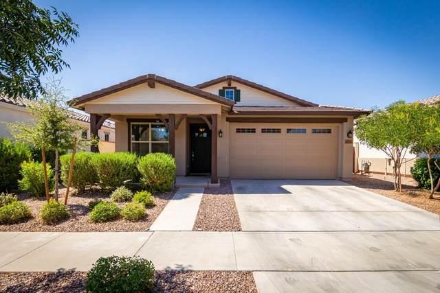 10510 E Corbin Avenue, Mesa, AZ 85212 (#6099225) :: AZ Power Team   RE/MAX Results