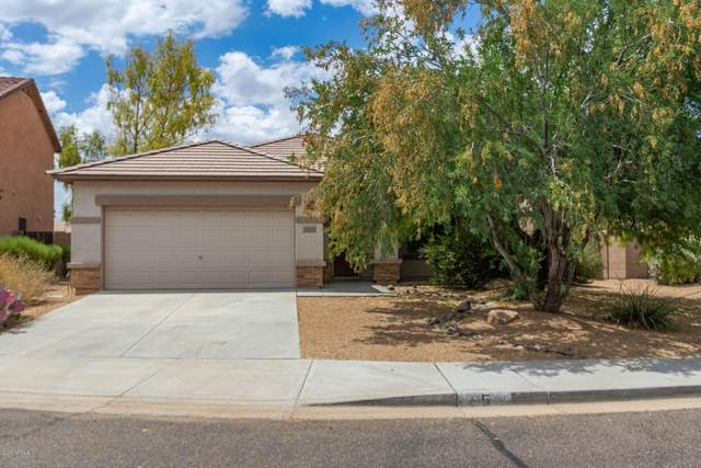 11559 W Tonto Street, Avondale, AZ 85323 (MLS #6099271) :: Yost Realty Group at RE/MAX Casa Grande