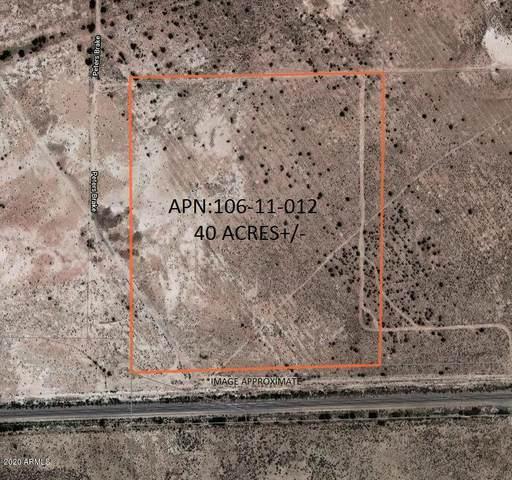 8664 Abdeen Street, Holbrook, AZ 86025 (MLS #6099287) :: Lux Home Group at  Keller Williams Realty Phoenix