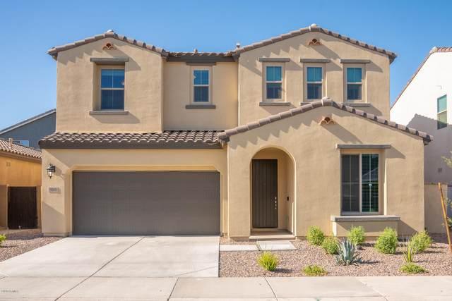 9809 E Solstice Avenue, Mesa, AZ 85212 (MLS #6099371) :: Homehelper Consultants