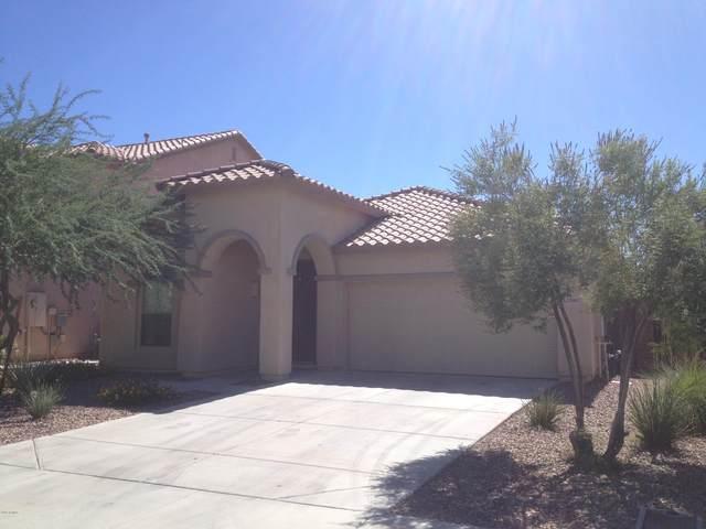 12089 W Dove Wing Way, Peoria, AZ 85383 (MLS #6099463) :: Nate Martinez Team