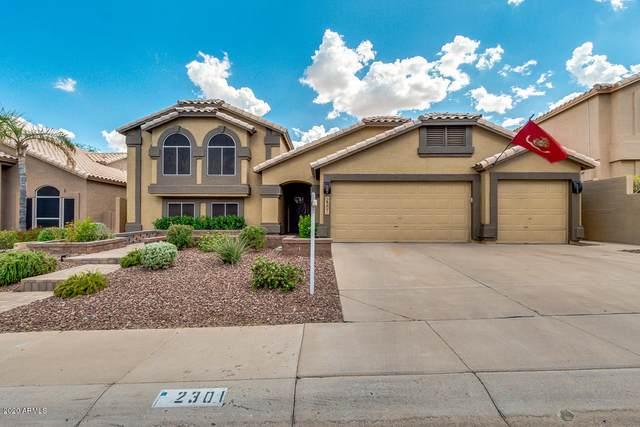 2301 E Rockledge Road, Phoenix, AZ 85048 (MLS #6099488) :: My Home Group