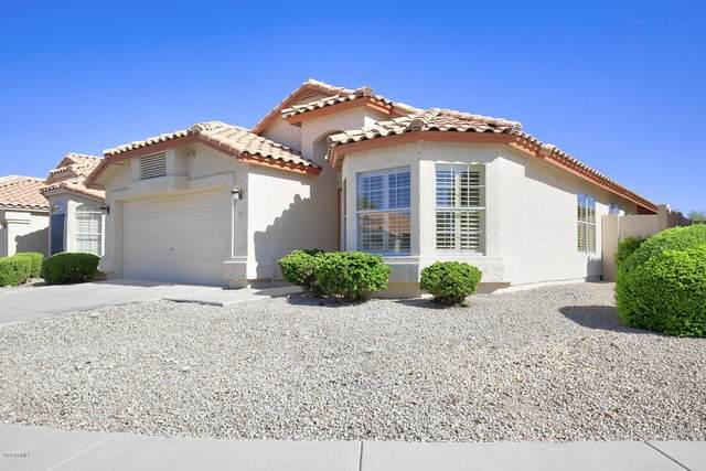 2316 E Williams Drive, Phoenix, AZ 85024 (MLS #6099557) :: The Property Partners at eXp Realty