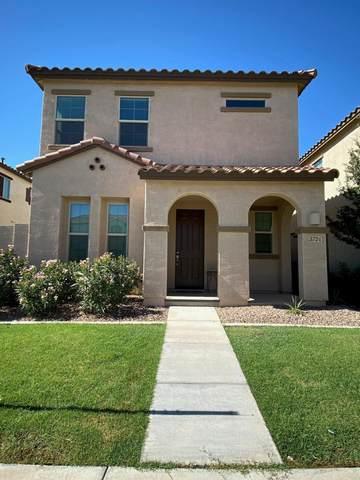 3724 E Trinity Lane, Chandler, AZ 85286 (MLS #6099573) :: Relevate | Phoenix