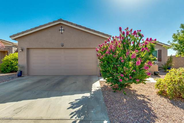 20996 N Sweet Dreams Drive, Maricopa, AZ 85138 (MLS #6099575) :: Kepple Real Estate Group