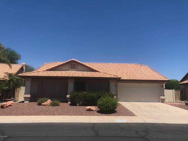 20360 N 110th Lane, Sun City, AZ 85373 (MLS #6099576) :: CANAM Realty Group