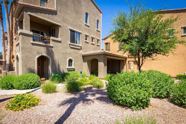 240 W Juniper Avenue #1002, Gilbert, AZ 85233 (MLS #6099578) :: Kathem Martin
